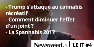 Le JT de Newsweed - #4