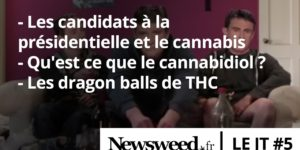 Le JT de Newsweed - #5