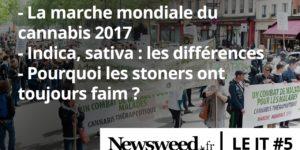 Le JT de Newsweed - #6