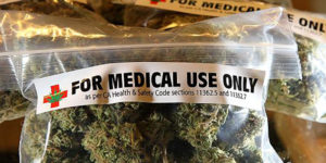 Etats-Unis : Le gouverneur de Floride valide le projet de cannabis médical