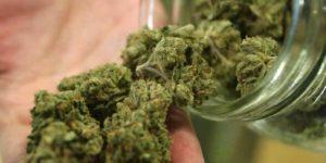 Les Australiens épileptiques se tournent vers le cannabis thérapeutique