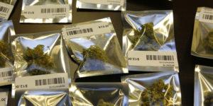 Nevada : Pénurie de cannabis récréatif après une semaine de vente légale