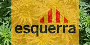 Espagne : proposition de loi pour une régulation nationale du cannabis