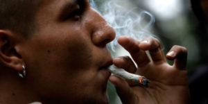 Une indienne donne-t-elle plus d'effets au cannabis ?