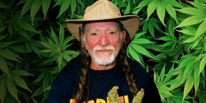 Willie Nelson recrute pour son futur dispensaire