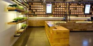 Comment acheter du cannabis en Californie ?