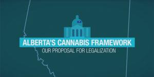 L'Alberta publie ses recommandations pour la légalisation du cannabis