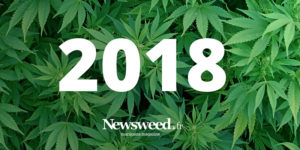 Bonne année 2018 sur newsweed.fr !