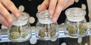 Deux banques canadiennes refusent les entreprises du cannabis