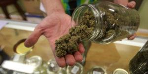 Ouverture des ventes légales de cannabis en Californie