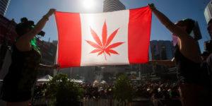 Le Canada devrait légaliser officiellement le cannabis le 1er juillet 2018