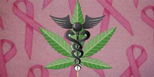 Des cannabinoïdes pour lutter contre le cancer du sein ou de la prostate