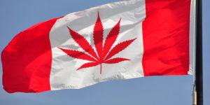 Canada : la Chambre des Communes a voté la légalisation du cannabis