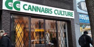 Les dispensaires Cannabis Culture définitivement fermés à Toronto