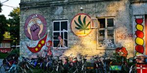 Le Danemark propose de tester le cannabis médical pendant 4 ans