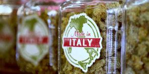 Le ministère de la Santé italien publie un guide sur le cannabis médical