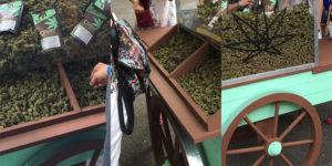 En Suisse, du cannabis fortement dosé en CBD vendu comme un substitut au tabac