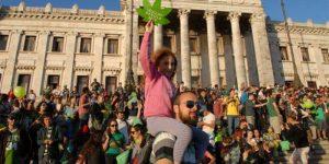 Uruguay : la production actuelle de cannabis ne couvrira pas la demande