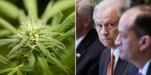 Etats-Unis : proposition de loi pour empêcher une répression fédérale sur le cannabis