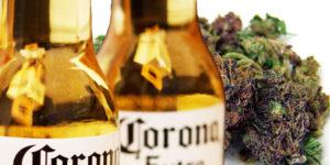 Le distributeur américain de la Corona entre dans l'industrie du cannabis