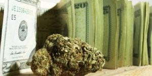 Etats-Unis : combien coûte une légalisation du cannabis ?
