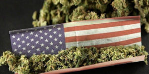 Quels Etats américains devraient légaliser le cannabis en 2017 ?