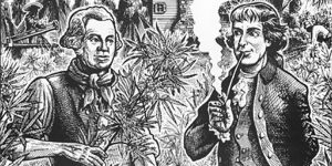 Une brève histoire de la marijuana