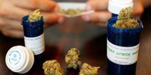 Italie : la légalisation du cannabis médical fait un pas en avant