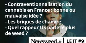Le JT de Newsweed – #9