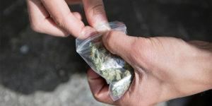 Suisse : nouvelle initiative pour légaliser le cannabis