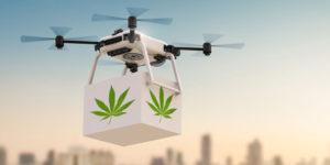 Californie : drones et voitures autonomes ne pourront pas livrer de cannabis