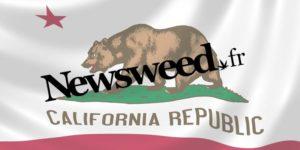 Newsweed en Californie : résumé de notre voyage