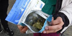 Uruguay : pénurie de cannabis en pharmacie jusqu'à mi-novembre