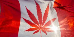 Le Québec plus frileux sur la légalisation du cannabis que les autres provinces