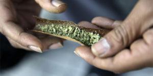 Canada : le Saskatchewan dévoile ses plans de légalisation du cannabis