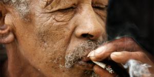 THC : des doses journalières pourraient améliorer la mémoire des personnes âgées