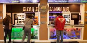 Trouver un travail dans l'industrie du cannabis est maintenant un peu plus facile
