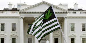 L'administration Trump s'attaque au cannabis récréatif