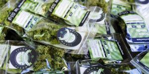 Les ventes de cannabis au Nevada atteignent 33 millions de dollars au mois d'août