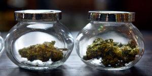 A la recherche d'un éthylotest pour cannabis fiable